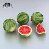3d model watermelon melon