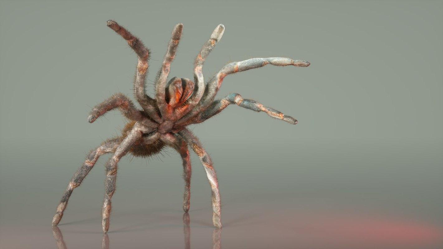 opelma minax spider 3d obj