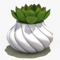 decorate plant 4 max