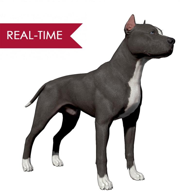 3d model pitbull dog bull