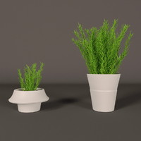 plant white plastic pot 3d model