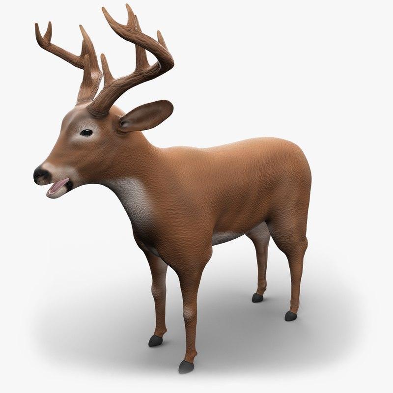 deer v-ray animation 3d model