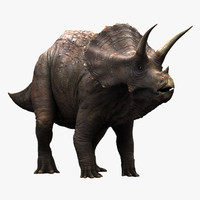 realistic triceratops 3d model