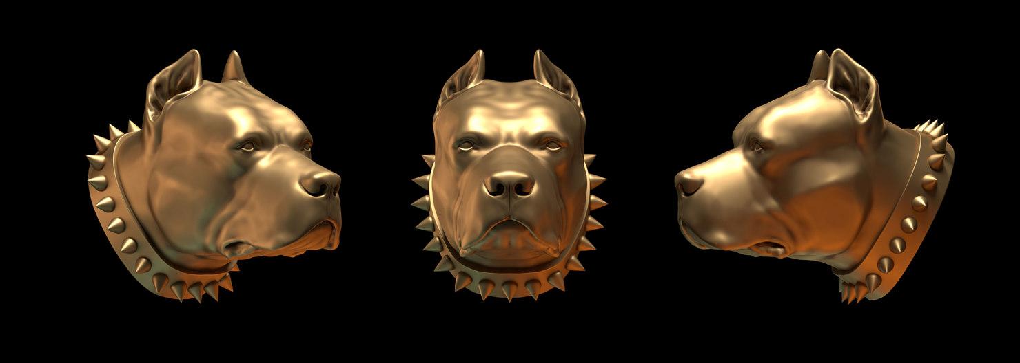 pit bull 3d model
