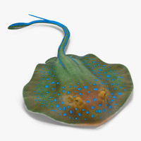 blue spotted stingray pose 3d c4d