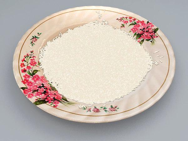 3d dish rice model