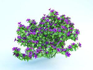 3d flowering azalea