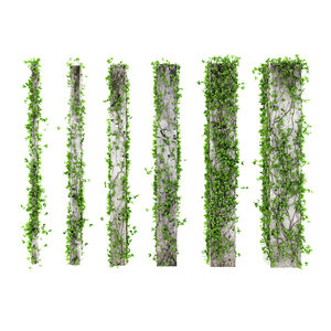3d leaves square columns model