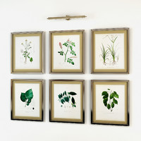 3d model eichholtz botanical prints framed