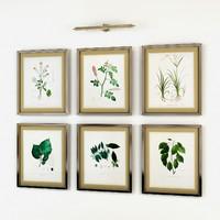3d model eichholtz botanical prints framed