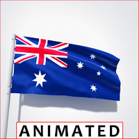point flag animation 3d model