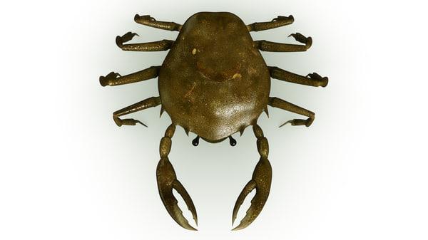 3d crab rigged