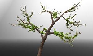 tree green 3d fbx