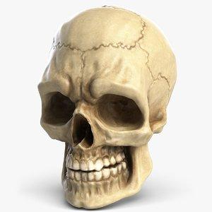 human skull 4 3d model