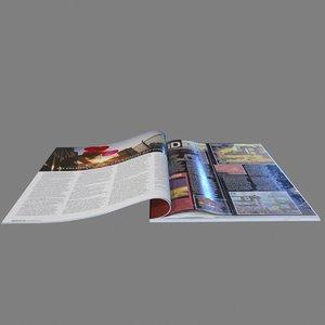 3ds magazines
