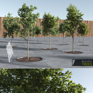 trees pack 3d obj