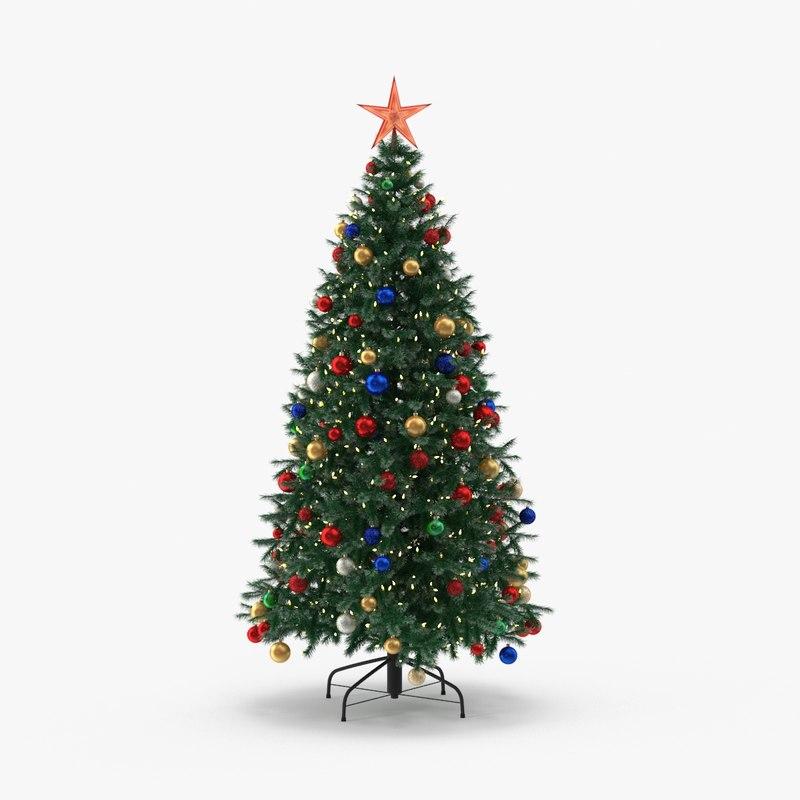max douglas fir tree