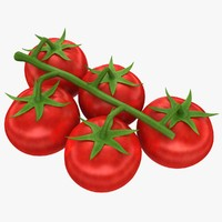 realistic cherry tomatoes 3d model