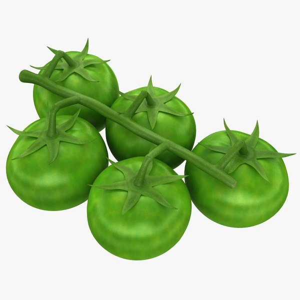 realistic cherry tomatoes green obj