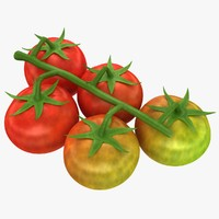 realistic cherry tomatoes mix 3d model