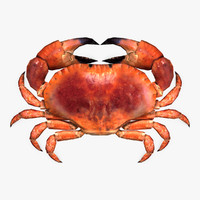 Crab (rigged)