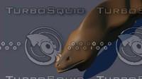 3d model moray eel