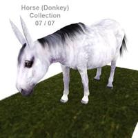 3d realistic horse 07 - model