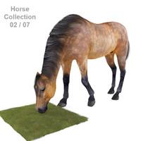 realistic horse 02 3d max
