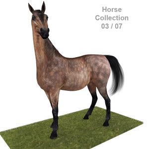 3d realistic horse 03 model