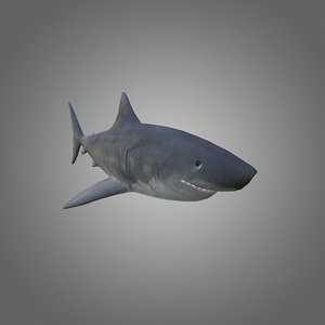 3d model of low-poly shark
