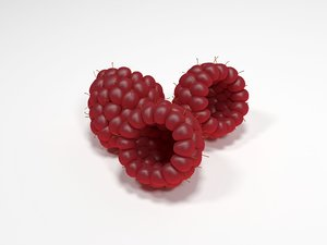 3d raspberry