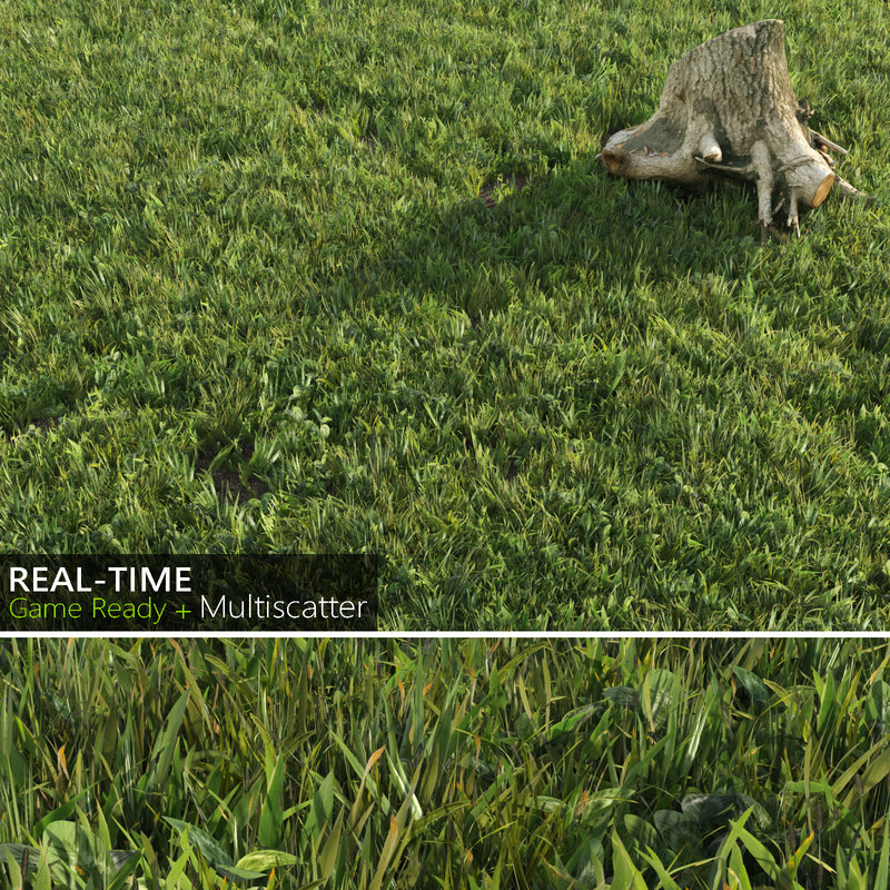 real-time lawn grass 3d max