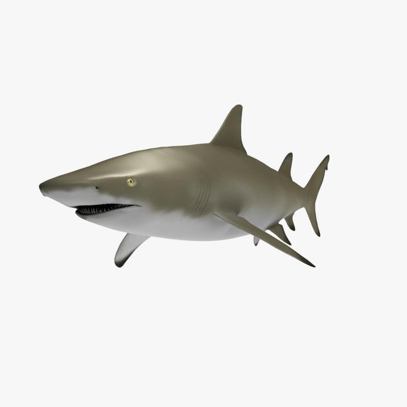 3d model of lemon shark