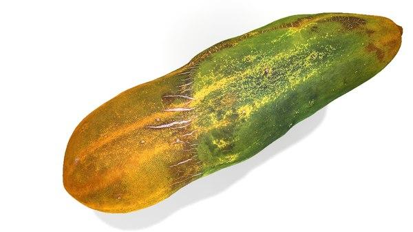3d cucumber model
