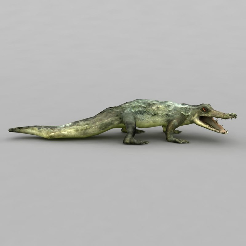 crocodile modelled scaled 3d 3ds