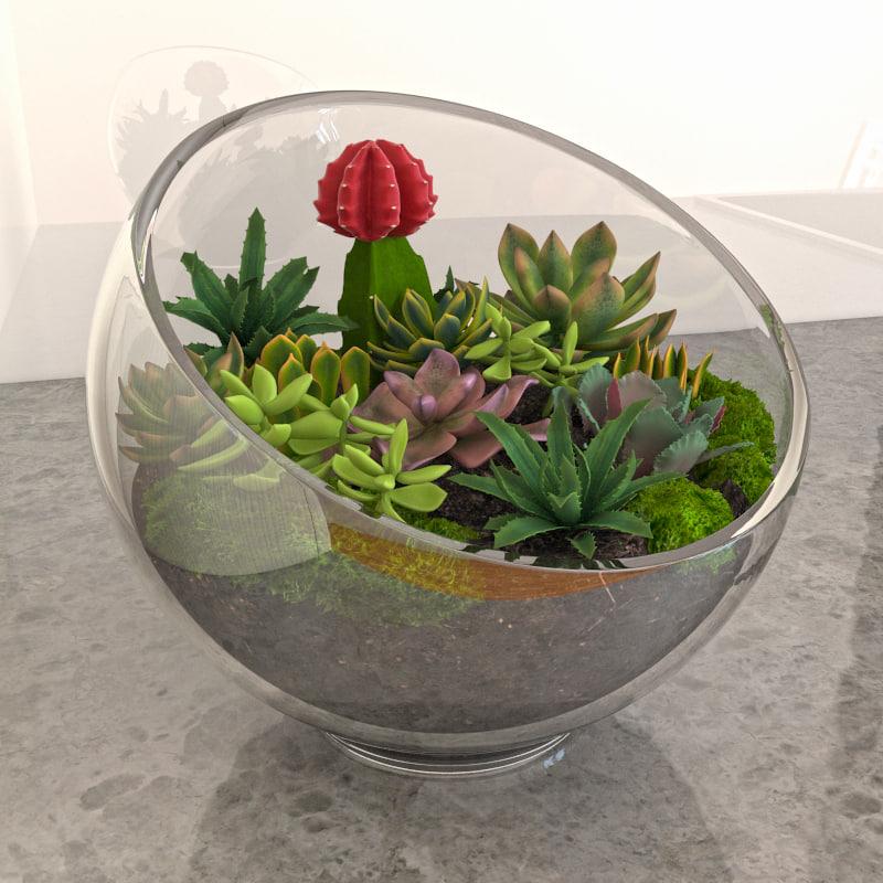 succulent glass bowl 3d model