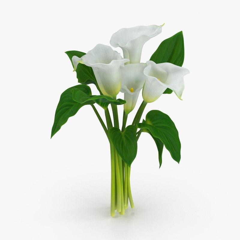 calla lilies 3d model