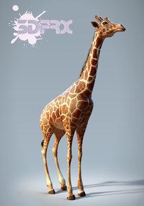 3d model hd giraffe