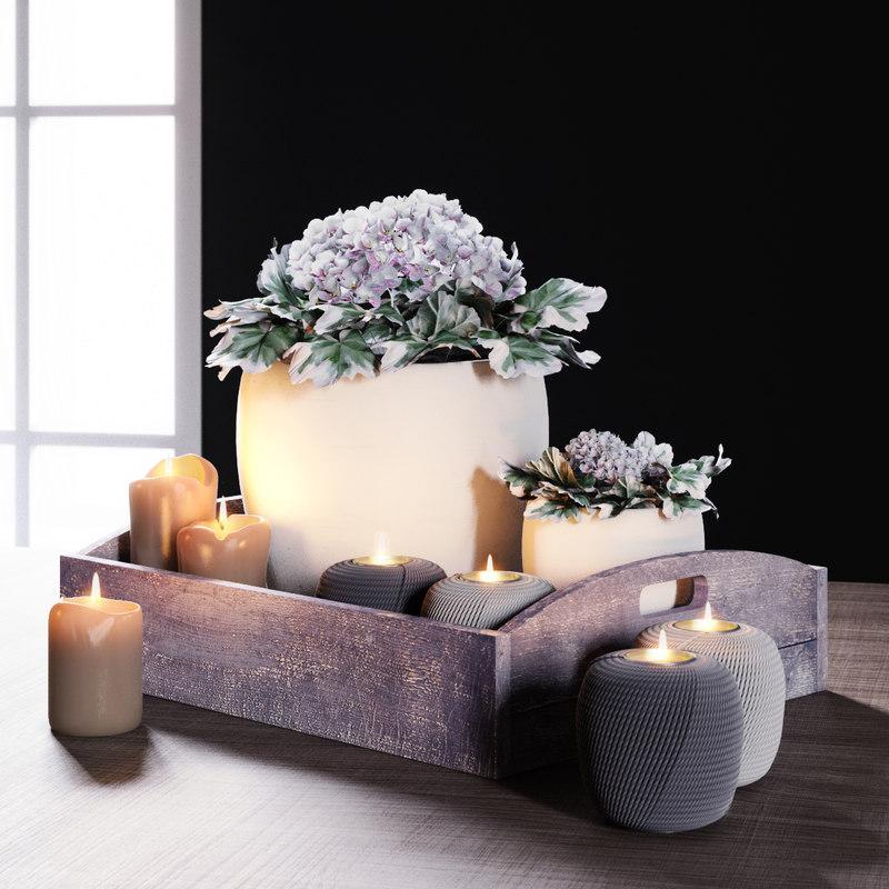tray geranium max