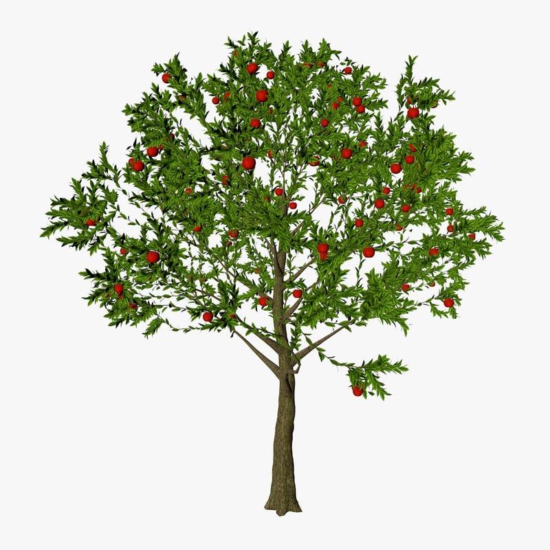 apple tree 3ds