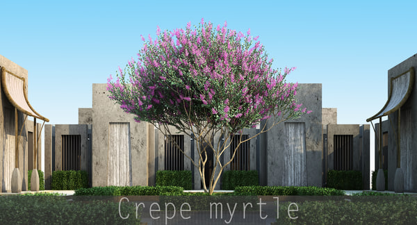 trunk 5 tree flowers max