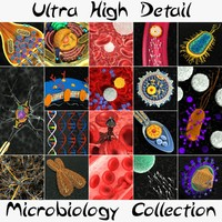 3d model ultra microbiology