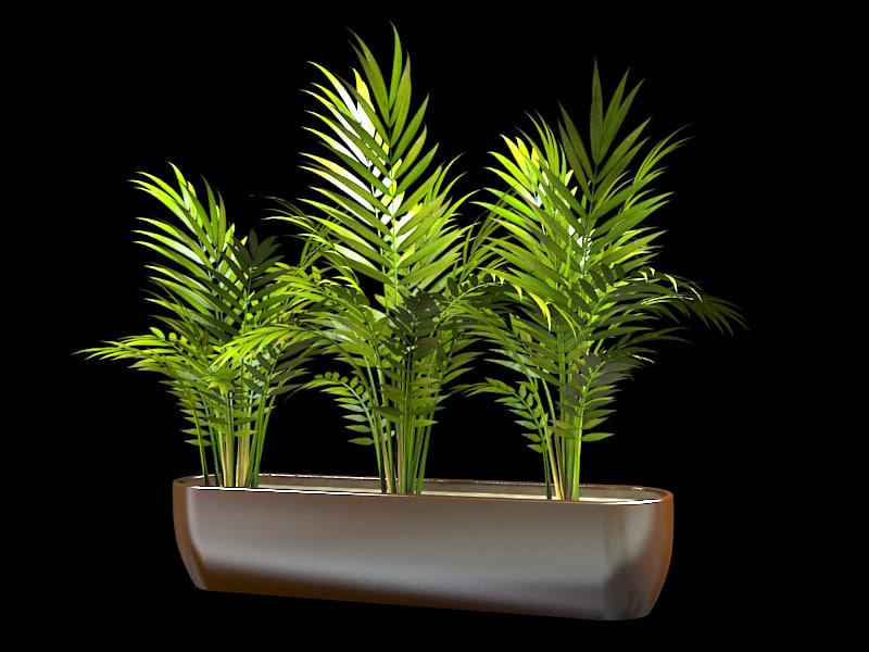 palm interior design 3d model