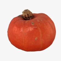 pumpkin scan realistic max