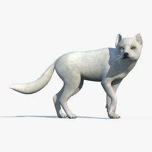 3d arctic fox rigged