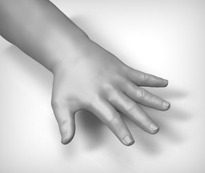 beauty child hand 3d model