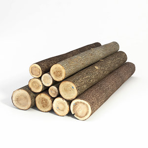 3d logs model