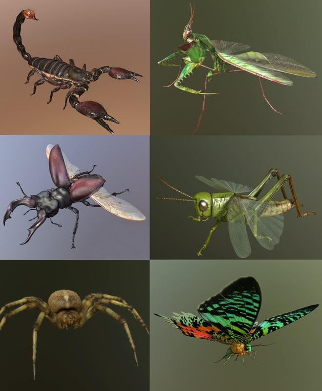 scorpion mantis stag 3d model