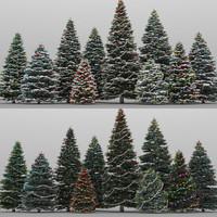 10+10 Christmas Trees