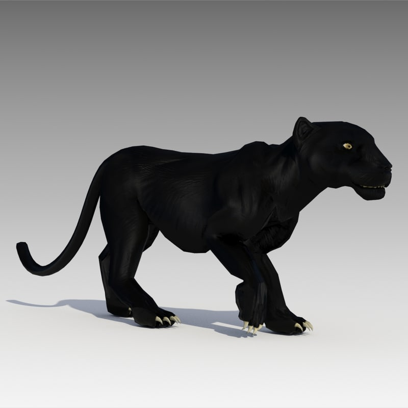 3d black panther animations model